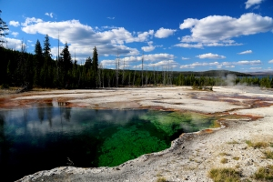 Colourful hot pool at Yellowstone National Park.