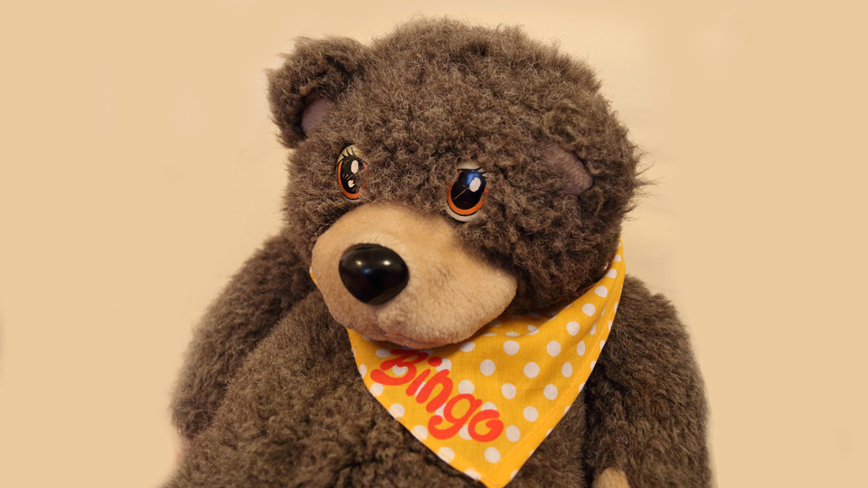 Our family treasure is Bingo The Talking Bear. Loved by my son and daughter and now about 24 years old.